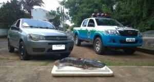 Pescado-e-veículo-apreendidos-Aquidauana-PMA-8-dez-2015-1038x576-672x372
